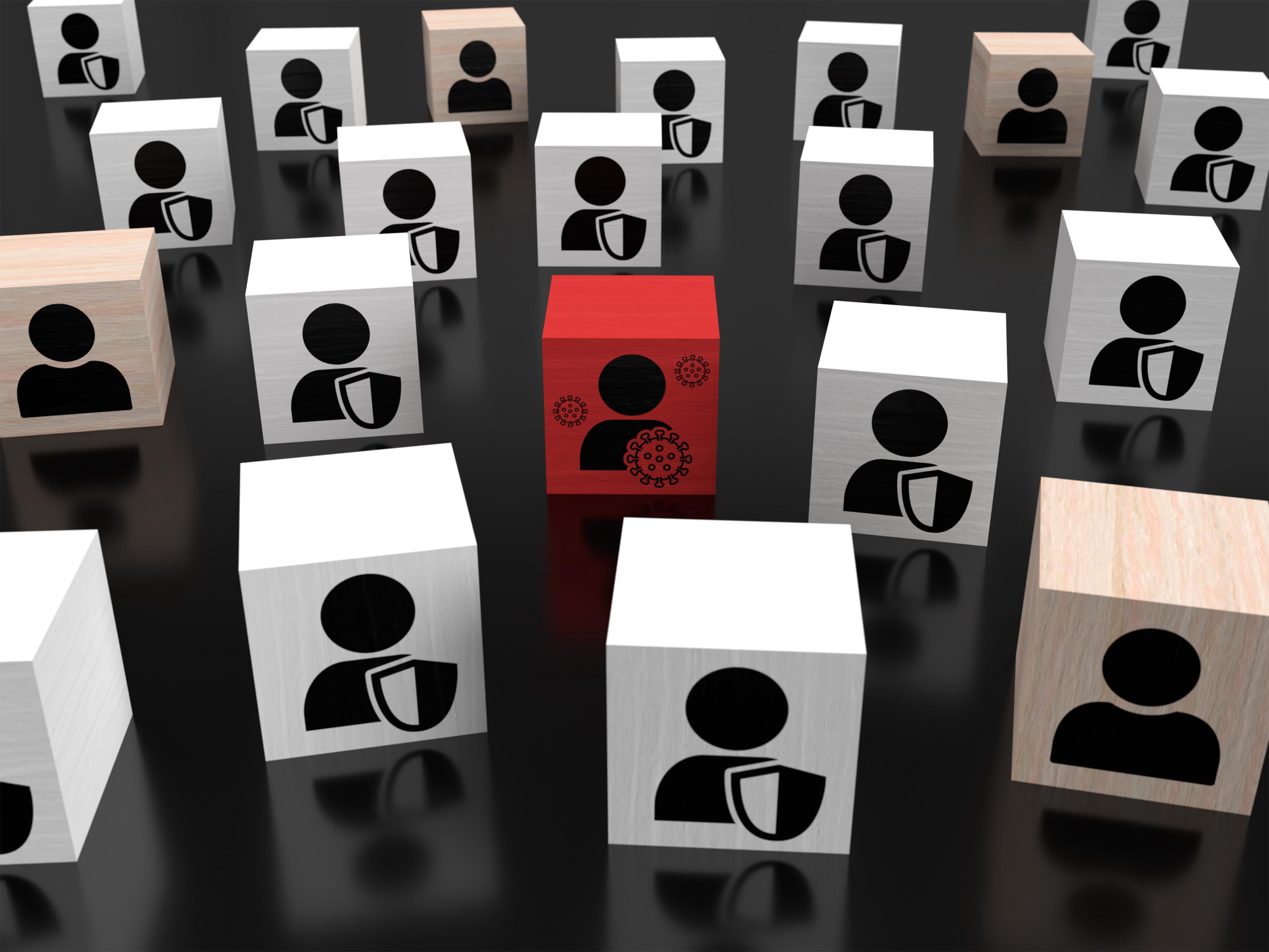 Herd Immunity wooden blocks